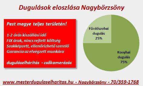 Duguláselhárítás Nagybörzsöny - statisztikák